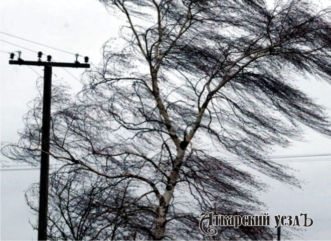 Свердловчан предупредили онадвигающемся шквальном ветре