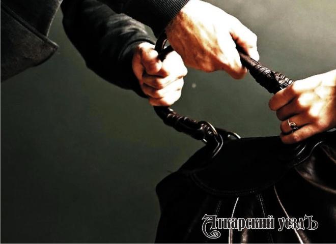 Полицейские ссобакой искали преступника, напавшего наулице напрохожую