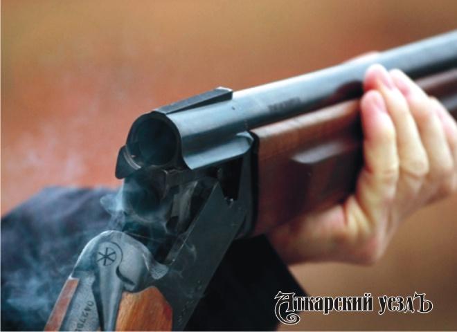 Саратовец стрелял изружья побродячим собакам