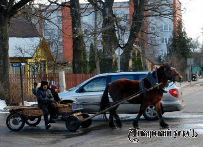 Лошадь с телегой в транспортном потоке
