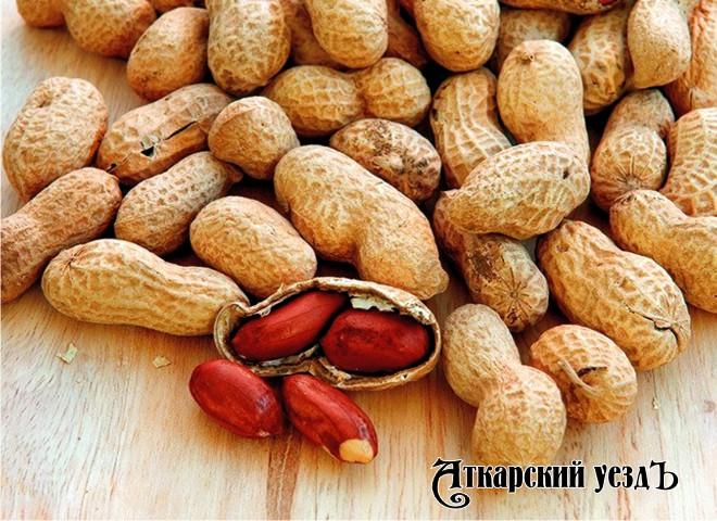 Употребление арахиса вдетстве защитит оталлергии нанего— Ученые