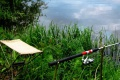 Пришёл июнь – на рыбалку плюнь...