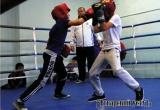 В ДЮСШ прошла матчевая встреча по боксу Аткарск – Ртищево. Фоторепортаж