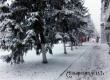 Синоптики обещают выпадение настоящего снега только в ноябре