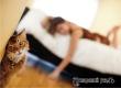Эксперты раскрыли секрет долголетия: завтрак, секс и котики