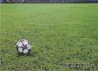 В Аткарске пройдут областные соревнования по футболу «Золотой колос»