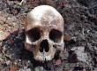 На заброшенном огороде в селе Озерное нашли человеческий череп