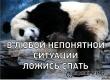 Саратовский вор-неудачник заснул на месте преступления