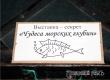 Выставка-секрет «Чудеса морских глубин» открылась в Аткарском музее
