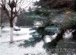 Синоптики обещают местами температуру до -23°С и небольшой снег