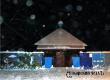 Жителей губернии ожидает морозная и тихая Крещенская ночь