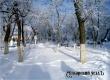 Ночью и утром в течение двух дней ожидается мороз до -25°С