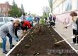 Соцработники высадили на Советской герань в рамках экологической акции
