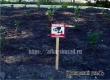 В парке Аткарска появились угрожающие таблички