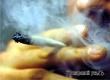 Житель Большой Осиновки марихуаной лечил больную спину
