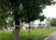 Аткарчан ожидает теплый день с порывистым ветром