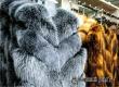 Пятигорские меха предложат аткарчанам разнообразие шуб и жилеток
