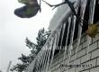 Первый день календарной зимы в Аткарске пройдет при легком морозце