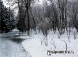 ГУ МЧС: в большинстве районов ожидаются снегопады и гололедица