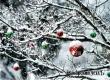 После двух дней 20-градусных морозов к Рождеству придет оттепель