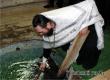 Отец Дионисий освятил воду в купели Дегтярного оврага и на роднике Шумок
