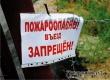 Запрет на посещение лесов продлен до 20 июля включительно