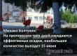 Михаил Болтухин: Ближайшие три дня ожидаются прохладными и дождливыми