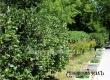 Жара в Саратовской области сохранится до конца июня