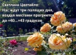 Облгидрометцентр: Воздух в Саратовской области прогреется до +43°C