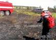 Пожарные и спасатели ликвидировали пожар у лагеря «Сосенки»