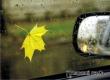 В МЧС рассказали об опасных ошибках водителей на осенних дорогах