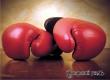 ВЦИОМ: 46 процентов россиян признались в любви к боксу
