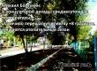 Гидрометцентр: Погода «золотой осени» и начало отопительного сезона