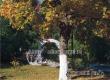 В Аткарске сохранится комфортная погода без осадков