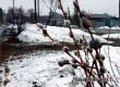 Гидрометцентр: аномальное тепло сменится значительным похолоданием со снегом