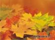 Аткарчан приглашают на субботний концерт «Осенний калейдоскоп»