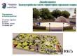Аткарчане выбрали для благоустройства в 2020 году городской парк