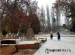 Михаил Болтухин: нас завалит снегом, ждем метель, гололедицу и оттепель