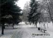 Синоптики обещают оттепельную погоду с дождем и снегом