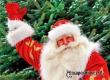В кинотеатре «Родина» откроется резиденция Деда Мороза