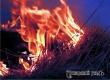 Под Аткарском неосторожный курильщик спалил 4 тонны своего сена