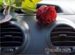 Ученые: запах роз в салоне автомашины защищает от попадания в ДТП
