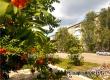 Гидрометцентр: лето-2020 завершится при хороших погодных условиях