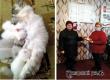 Сельчане провели фотоконкурс «Тайные снимки домашних животных»