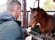 В День доброты жители Даниловки привезли подарки в зоопарк