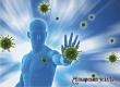 Названы 4 простых способа улучшить иммунитет весной