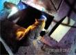 Аткарские спасатели помогли три дня просидевшему в подвале коту