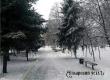 Гидрометцентр обещает в выходные слабый мороз и небольшой снег