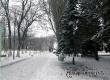 Михаил Болтухин: Сохранится аномально теплая погода с мокрым снегом и дождем