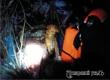 Спасатели помогли застрявшей в выброшенном диване собаке